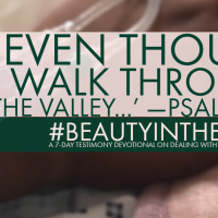 Psalm 23:4 - #BeautyInTheBeast